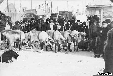 Комі АРСР, м.Інта. 1955